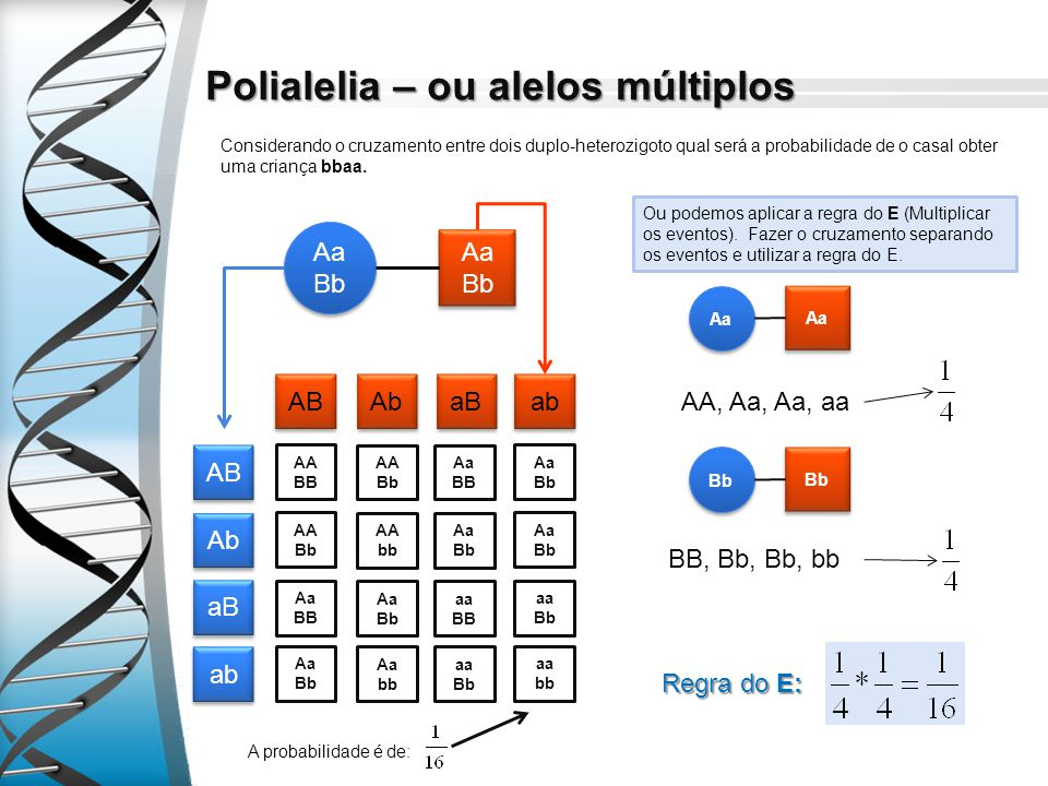 Polialelia – ou alelos múltiplos