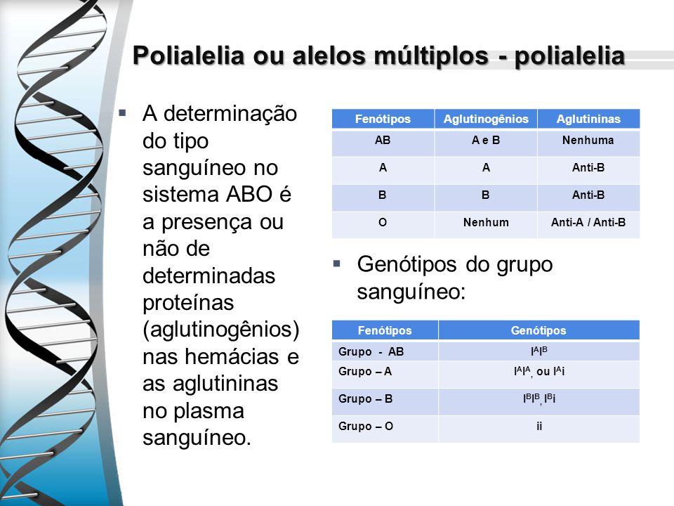 Polialelia ou alelos múltiplos - polialelia