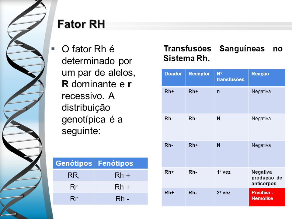 Fator RH O fator Rh é determinado por um par de alelos, R dominante e r recessivo. A distribuição genotípica é a seguinte: