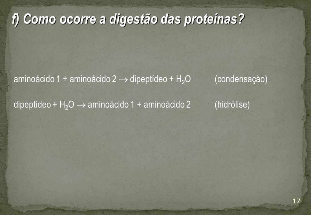 f) Como ocorre a digestão das proteínas