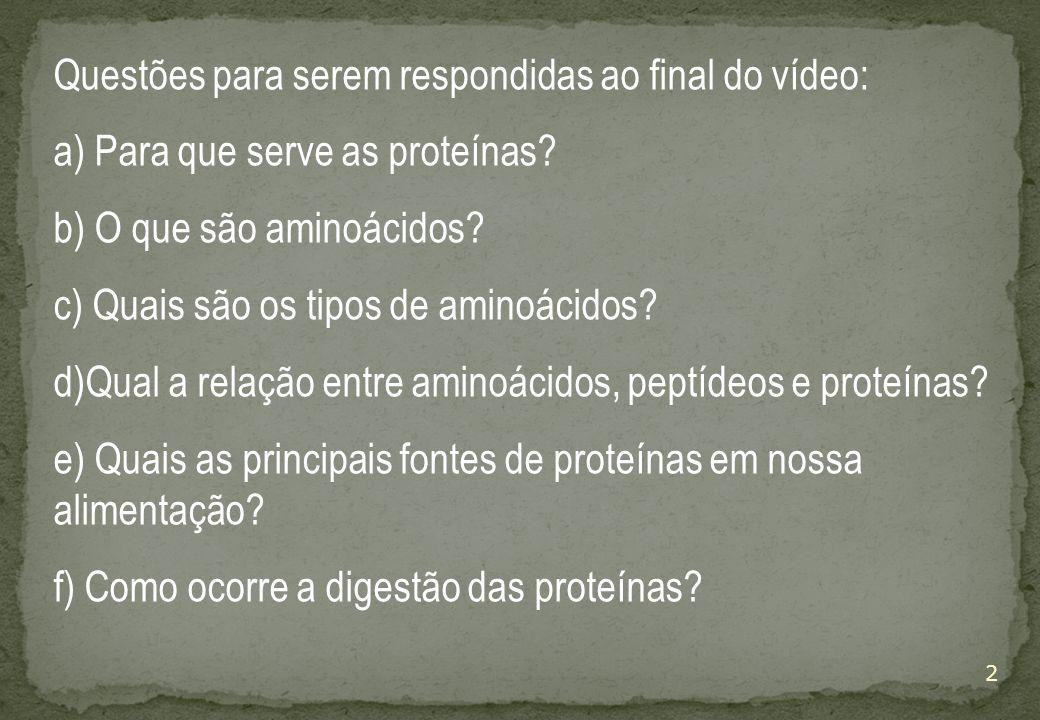 Questões para serem respondidas ao final do vídeo: