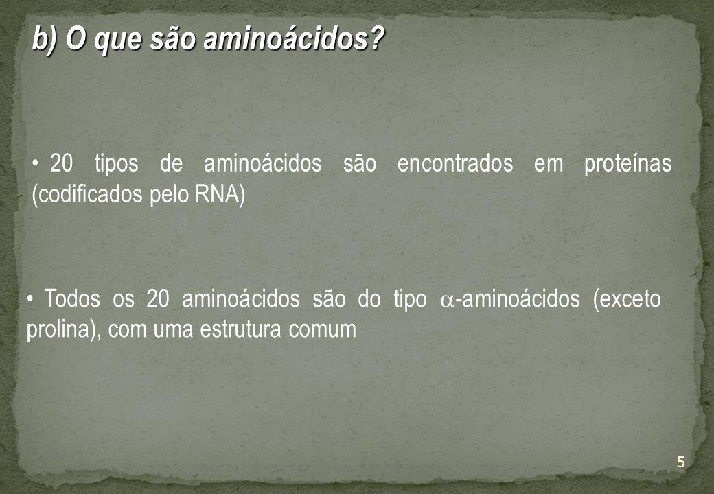 b) O que são aminoácidos