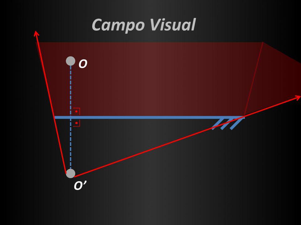 Campo Visual O O'