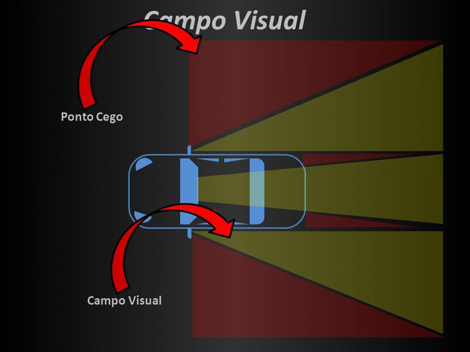 Campo Visual Ponto Cego Campo Visual