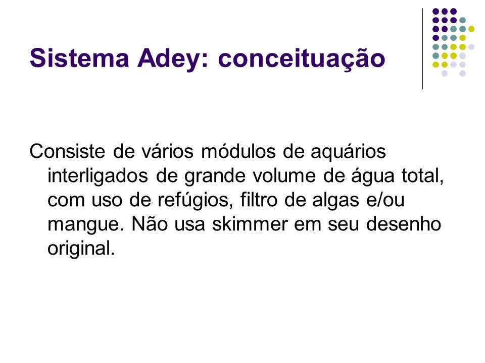 Sistema Adey: conceituação