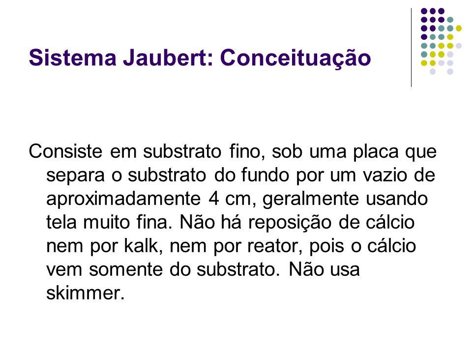 Sistema Jaubert: Conceituação