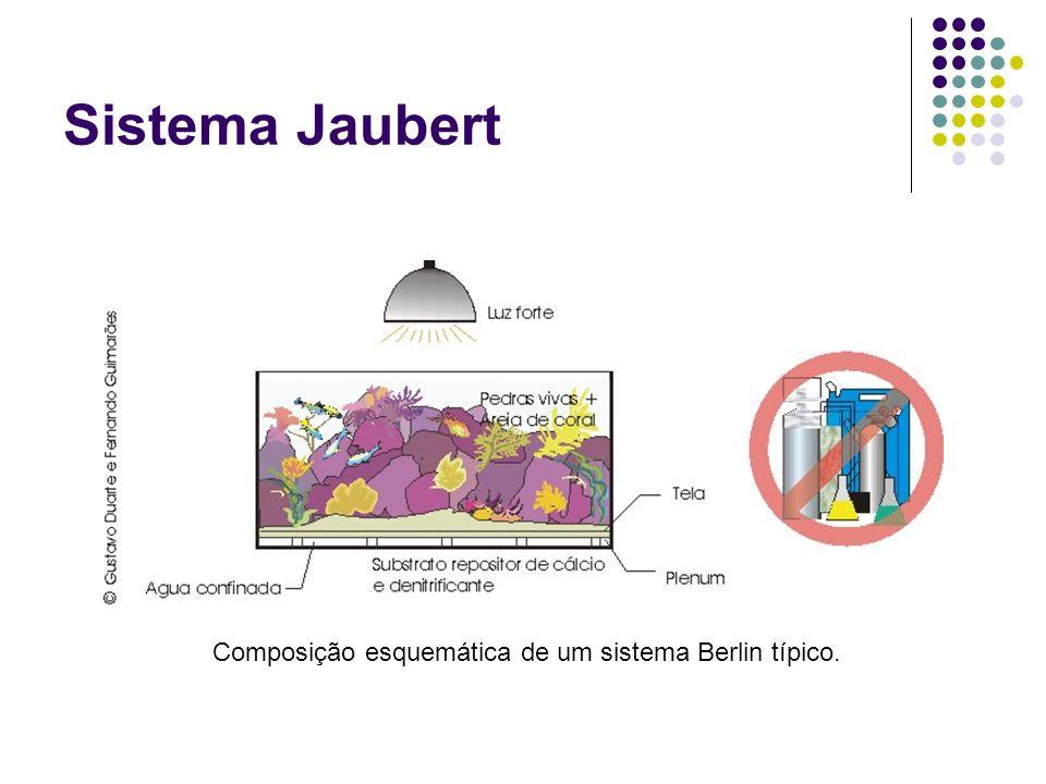 Sistema Jaubert Composição esquemática de um sistema Berlin típico.