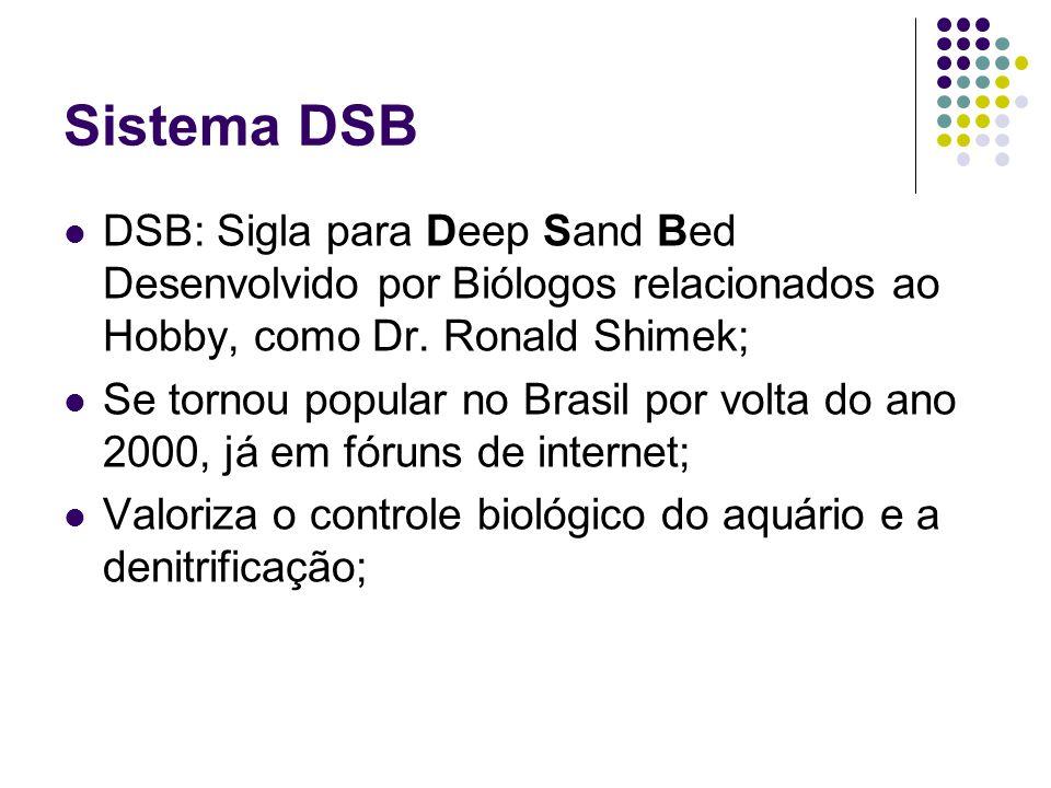 Sistema DSB DSB: Sigla para Deep Sand Bed Desenvolvido por Biólogos relacionados ao Hobby, como Dr. Ronald Shimek;
