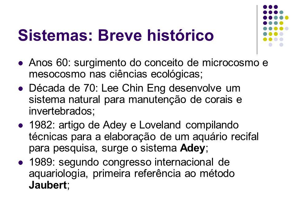 Sistemas: Breve histórico