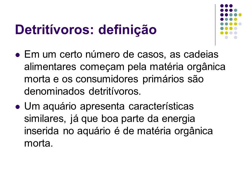 Detritívoros: definição
