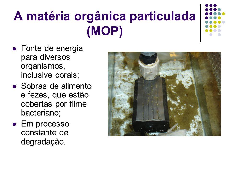 A matéria orgânica particulada (MOP)