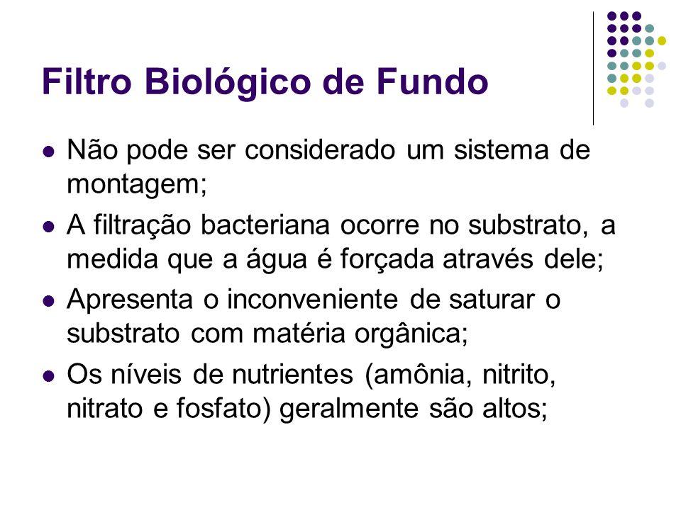 Filtro Biológico de Fundo