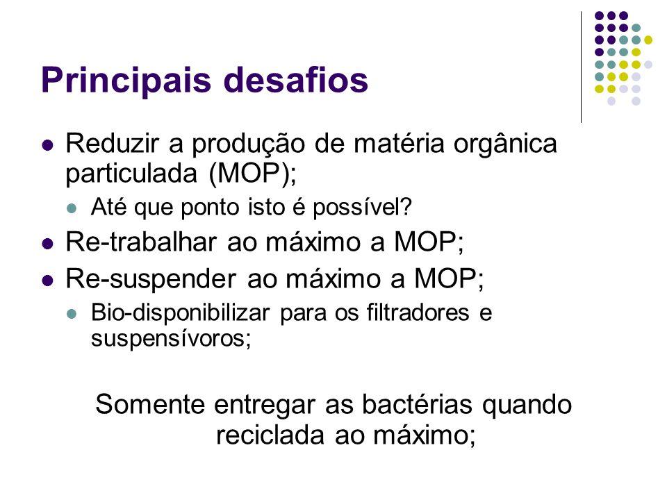 Somente entregar as bactérias quando reciclada ao máximo;