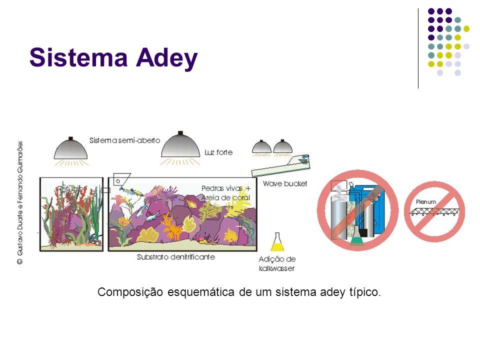 Sistema Adey Composição esquemática de um sistema adey típico.
