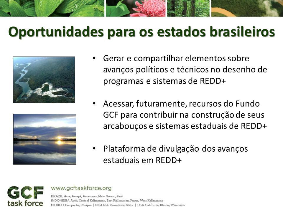 Oportunidades para os estados brasileiros
