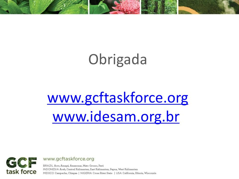 Obrigada www.gcftaskforce.org www.idesam.org.br