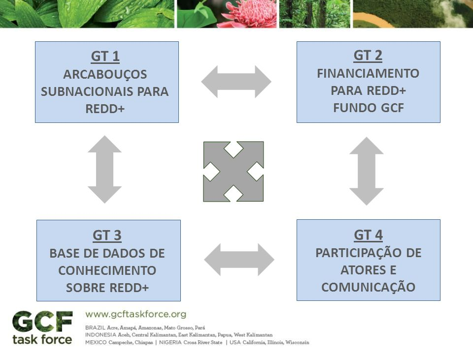 GT 1 GT 2 GT 3 GT 4 Arcabouços subnacionais para redd+ Financiamento