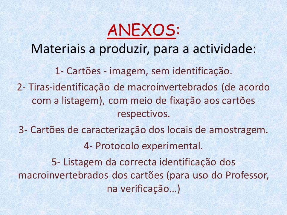 ANEXOS: Materiais a produzir, para a actividade: