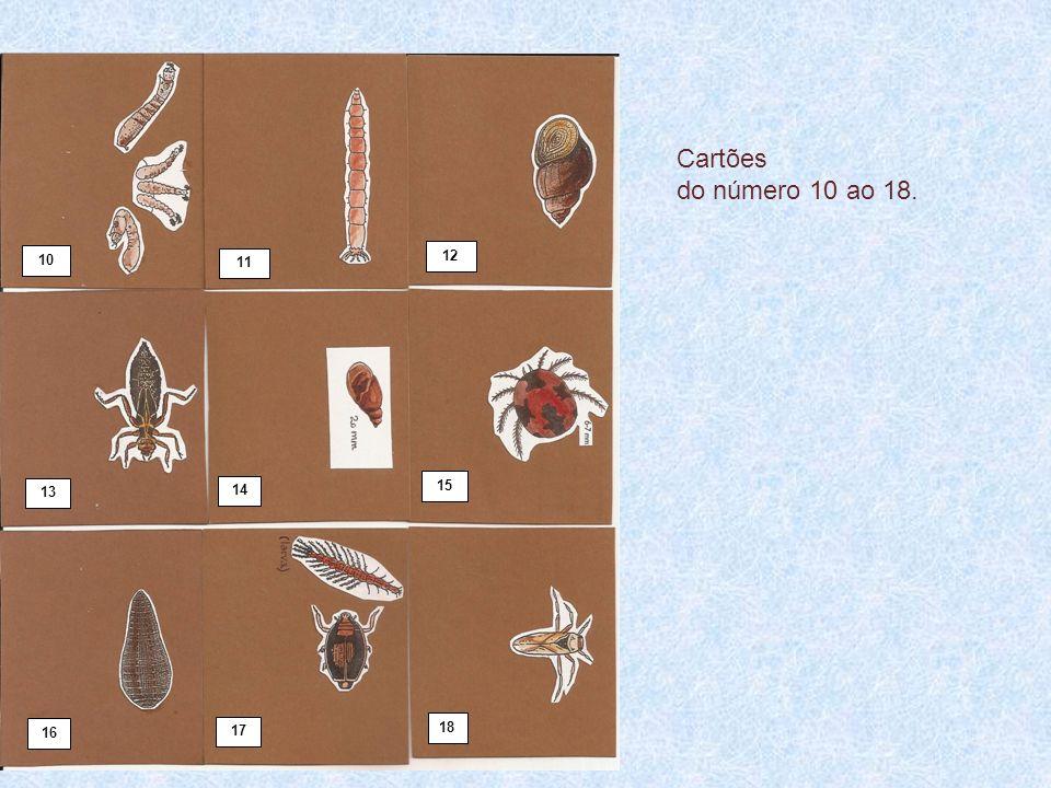 Cartões do número 10 ao 18. 10 12 11 13 14 15 16 17 18