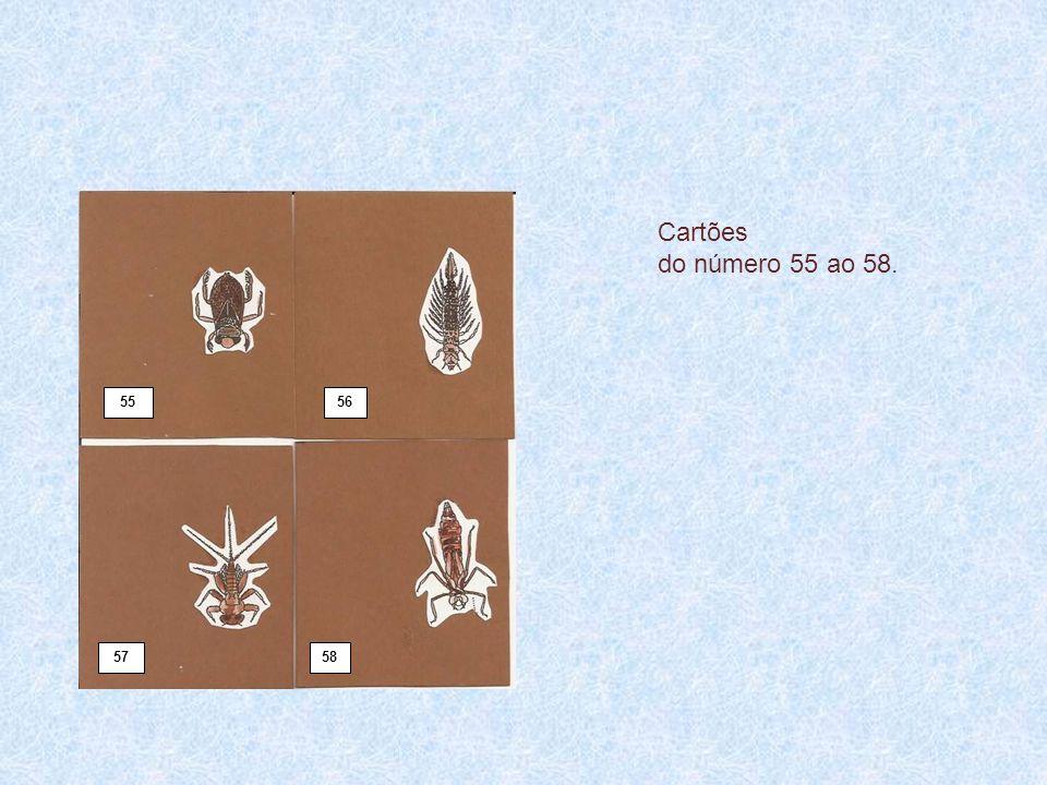 Cartões do número 55 ao 58. 55 56 57 58