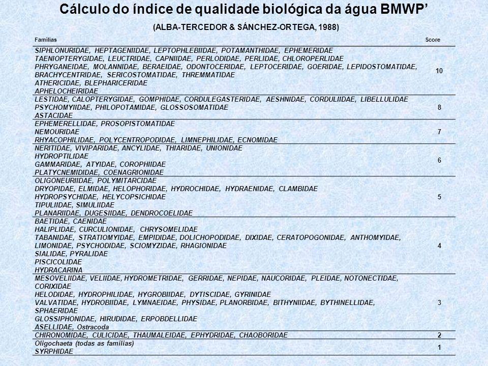 Cálculo do índice de qualidade biológica da água BMWP'