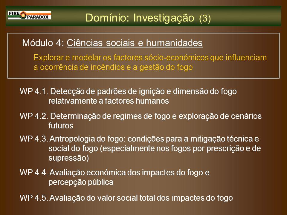 Domínio: Investigação (3)