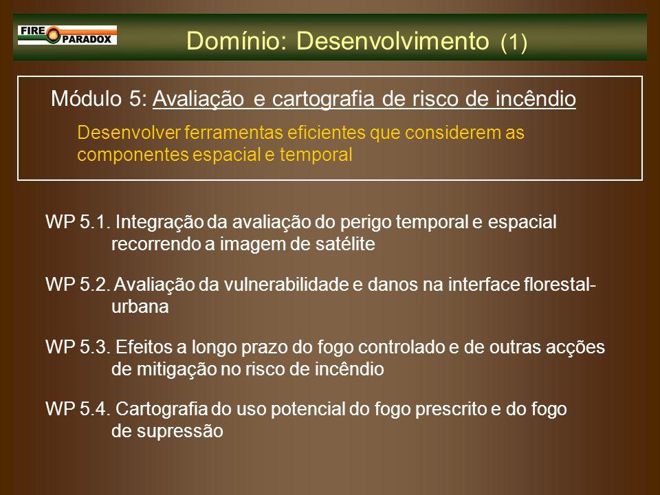 Domínio: Desenvolvimento (1)