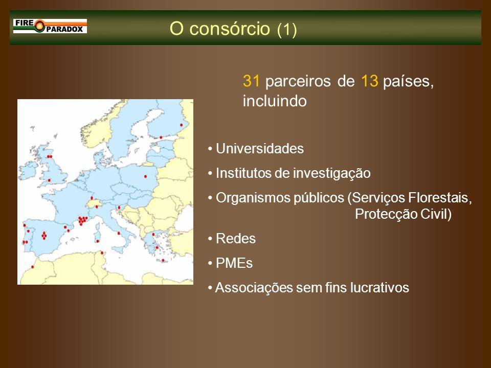 O consórcio (1) 31 parceiros de 13 países, incluindo Universidades