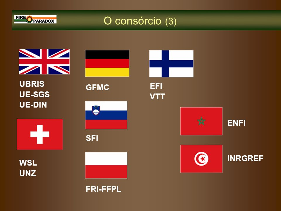 O consórcio (3) UBRIS UE-SGS UE-DIN GFMC EFI VTT ENFI SFI INRGREF WSL