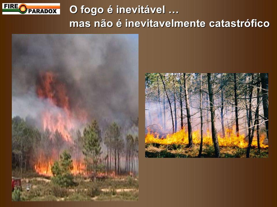 O fogo é inevitável … mas não é inevitavelmente catastrófico