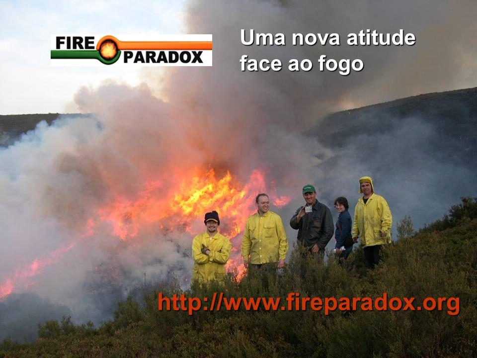 Uma nova atitude face ao fogo