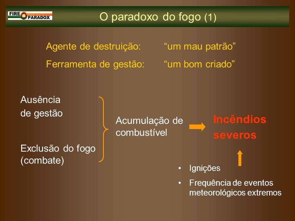 O paradoxo do fogo (1) Incêndios severos