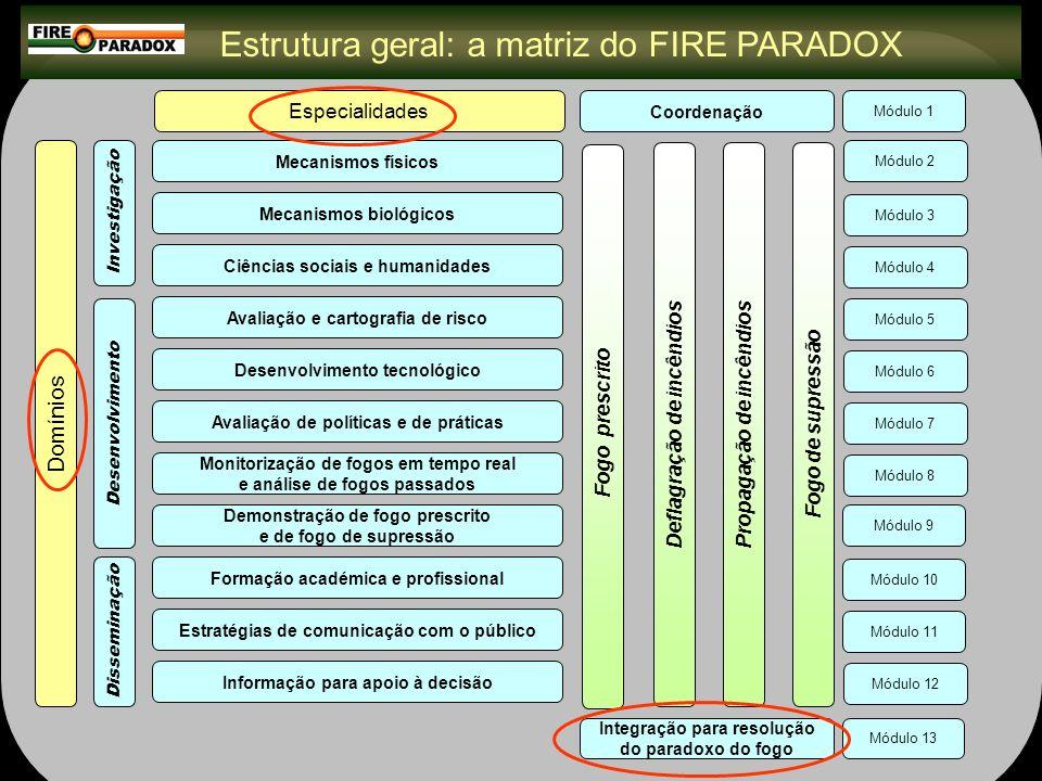 Estrutura geral: a matriz do FIRE PARADOX