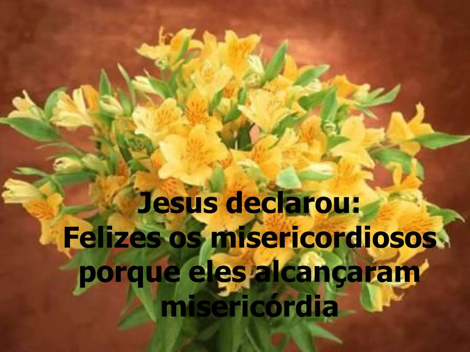 Jesus declarou: Felizes os misericordiosos porque eles alcançaram misericórdia