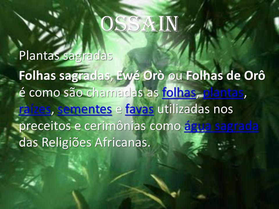 OSSAIN Plantas sagradas.