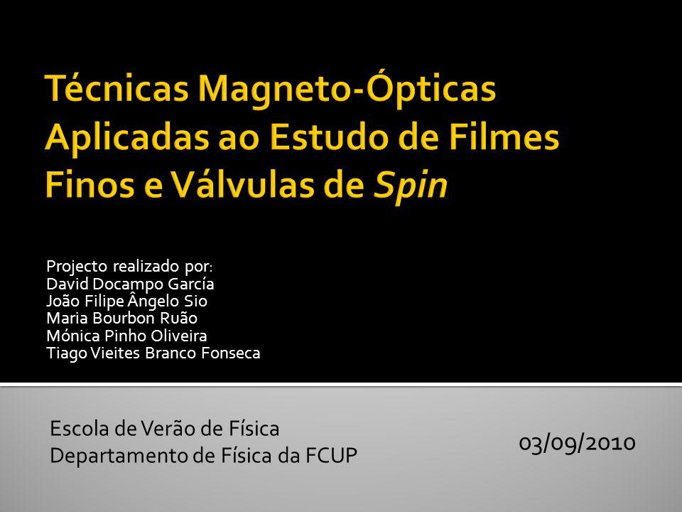 Técnicas Magneto-Ópticas Aplicadas ao Estudo de Filmes Finos e Válvulas de Spin