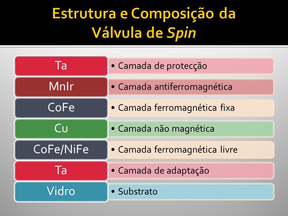 Estrutura e Composição da Válvula de Spin