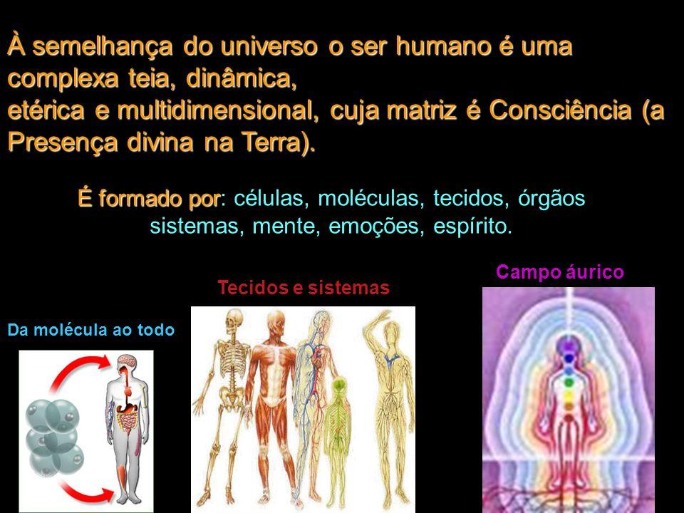 À semelhança do universo o ser humano é uma complexa teia, dinâmica,