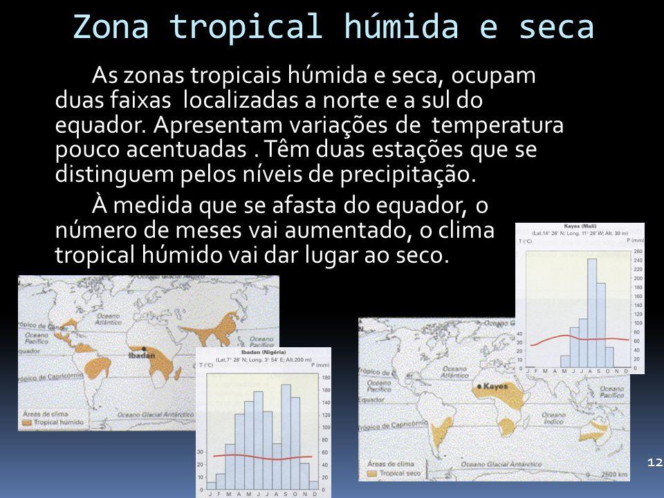 Zona tropical húmida e seca