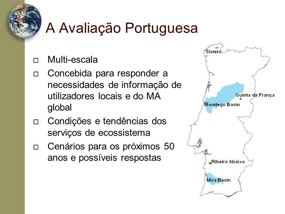 A Avaliação Portuguesa