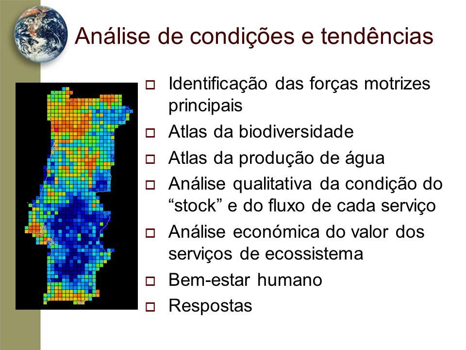 Análise de condições e tendências