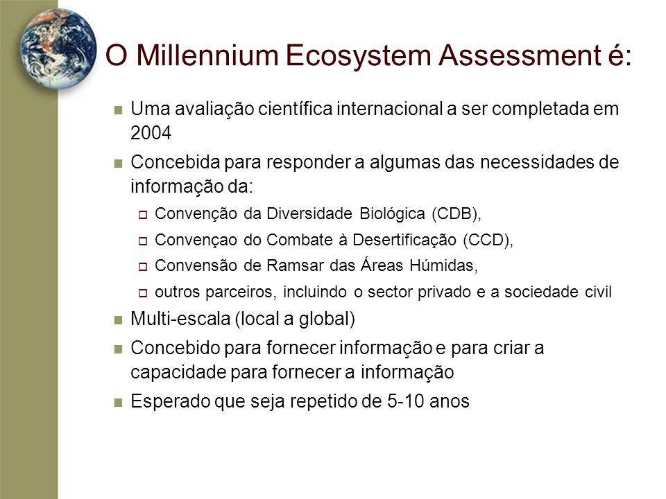 O Millennium Ecosystem Assessment é: