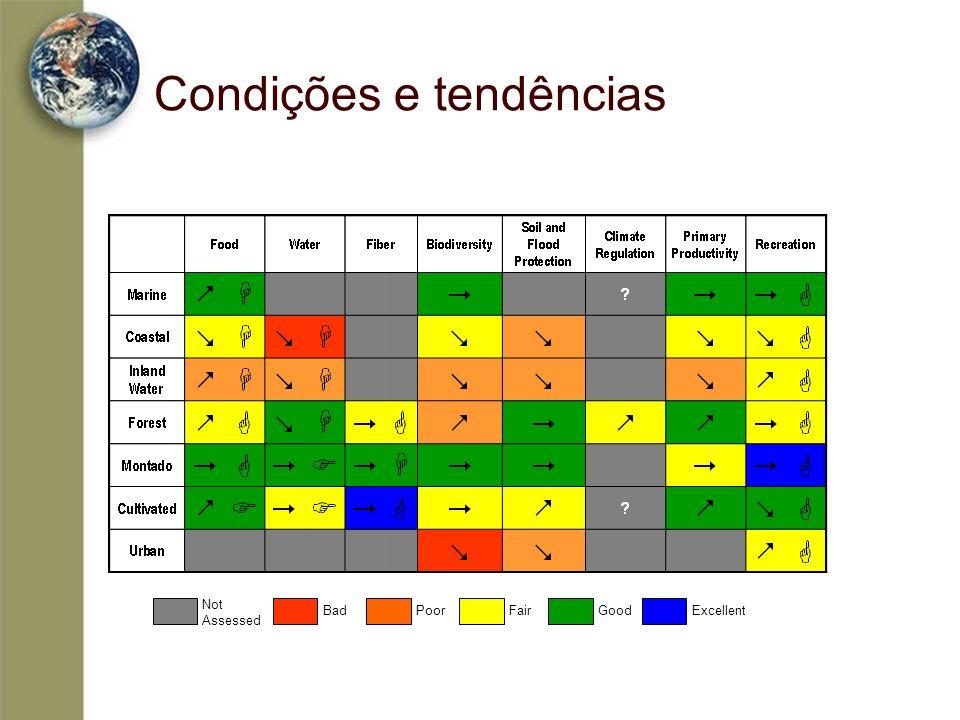 Condições e tendências