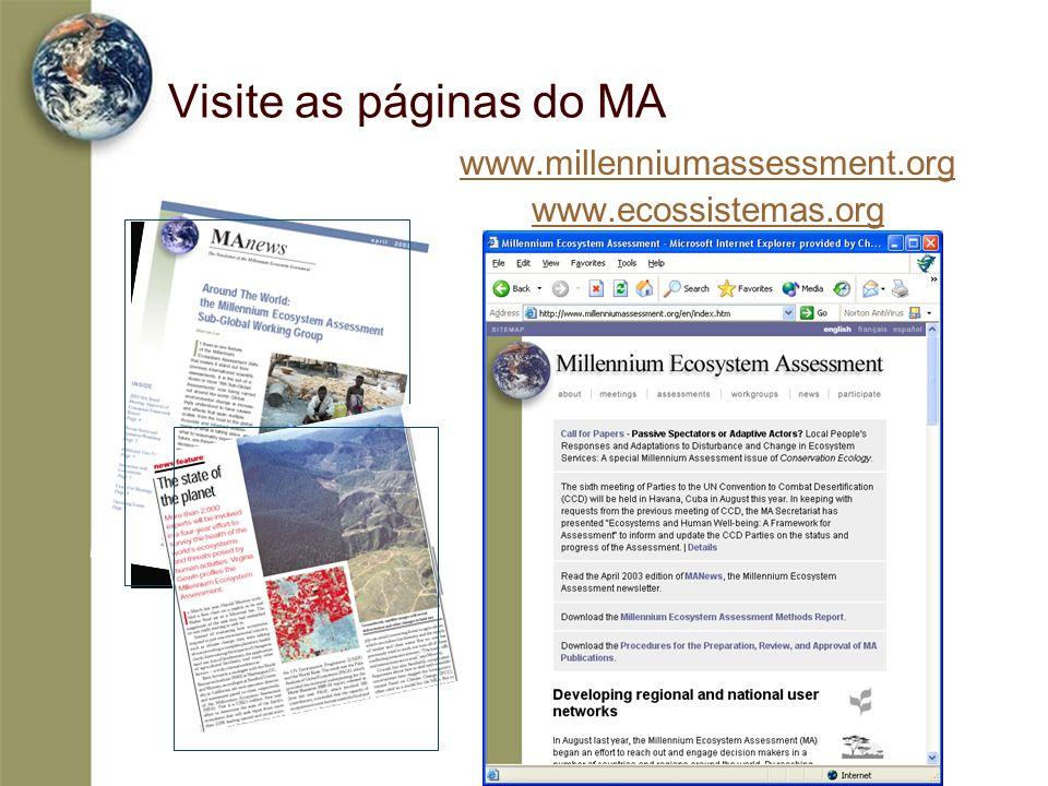 Visite as páginas do MA www.millenniumassessment.org