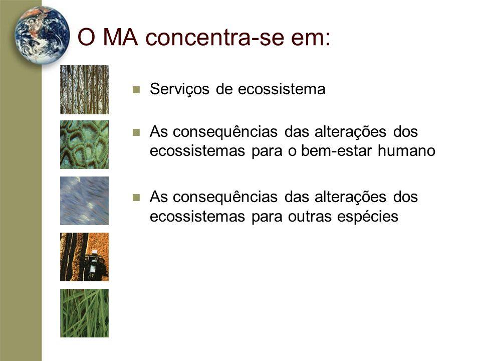 O MA concentra-se em: Serviços de ecossistema