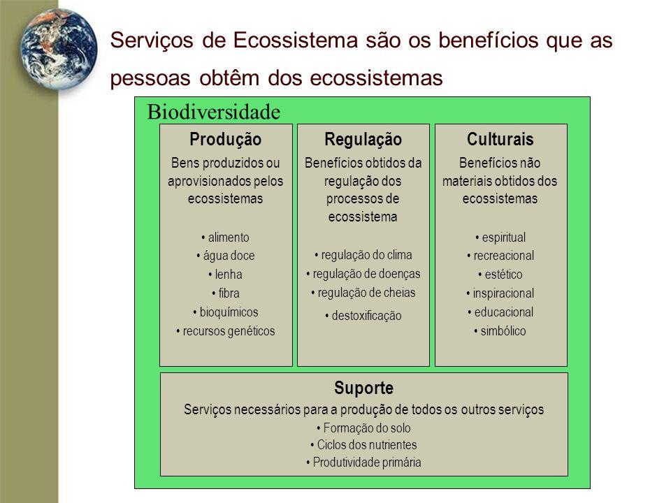 Serviços de Ecossistema são os benefícios que as pessoas obtêm dos ecossistemas