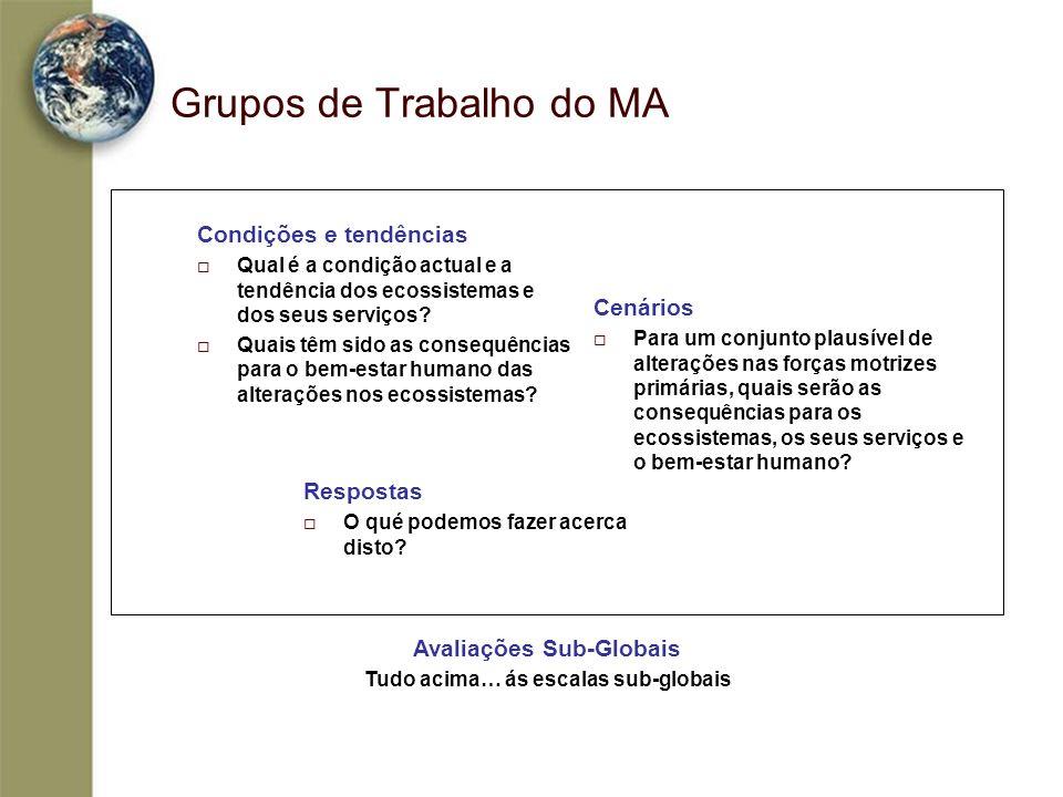 Grupos de Trabalho do MA