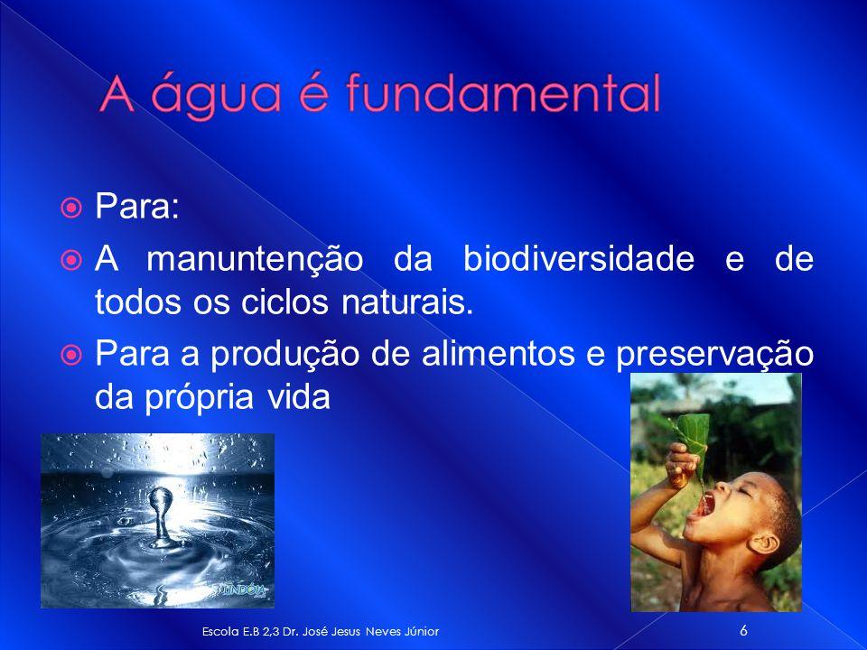 A água é fundamental Para:
