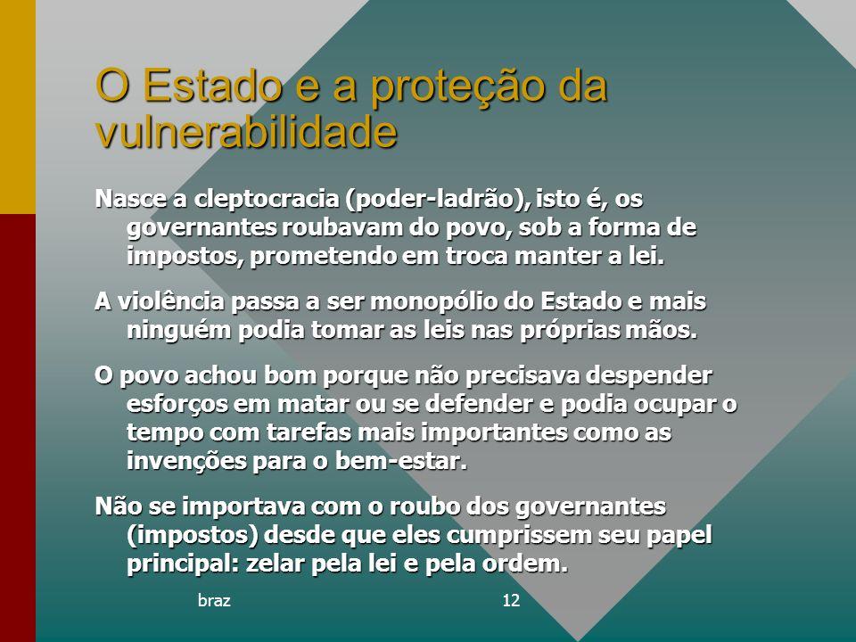 O Estado e a proteção da vulnerabilidade