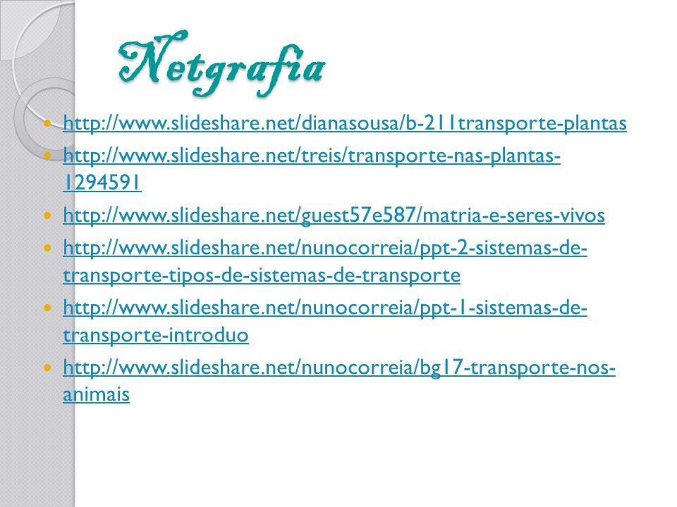Netgrafia http://www.slideshare.net/dianasousa/b-211transporte-plantas